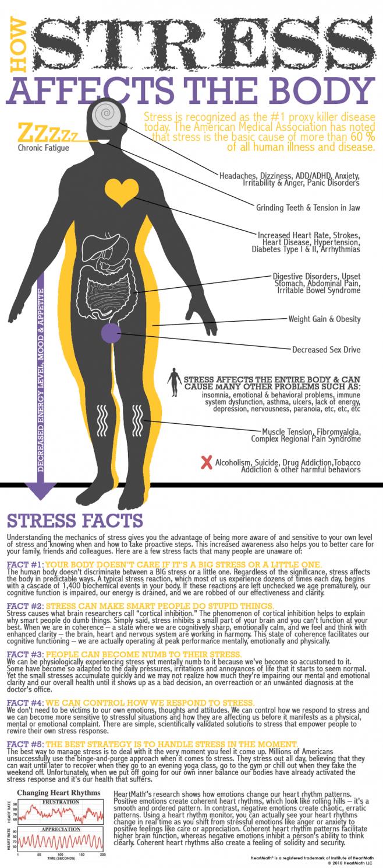 como afecta el estress a nuestro cuerpo