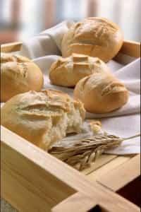 pan diario fresco