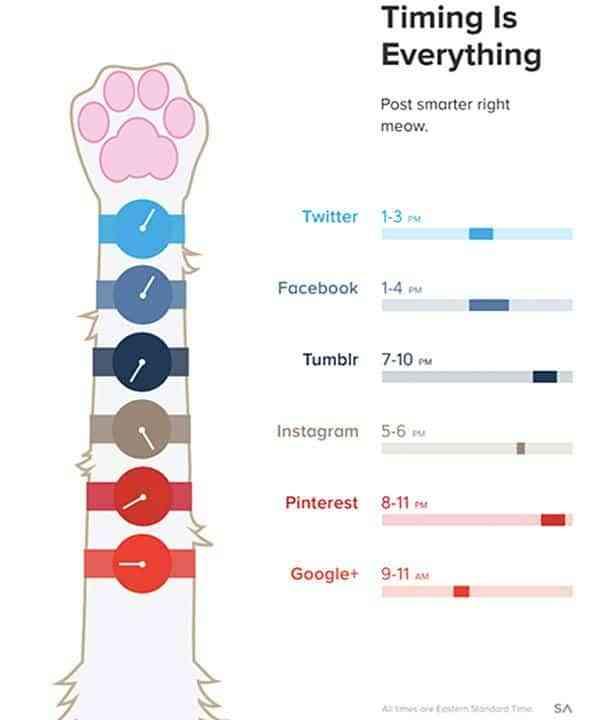 el tiempo lo es todo en redes sociales