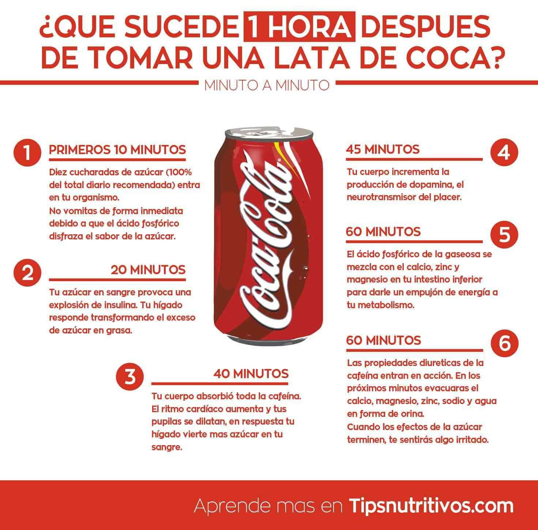 infografia - que pasa luego de tomar coca cola
